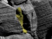 باحث يدعى وجود تابوت فرعونى على المريخ وعلماء آثار: خيال علمى