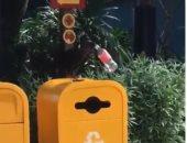 طيور بتحس.. طائر يمسك زجاجة بلاستيكية بمنقاره ليلقيها بصندوق القمامة