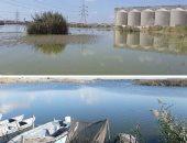 10 اختصاصات لجهاز حماية البحيرات والثروة السمكية بالقانون الجديد..تعرف عليها