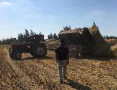 البيئة: جمع 48780 طن مخلفات زراعية بالمحافظات ضمن حملات التصدى لتلوث الهواء