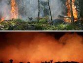 وزير الدفاع البرازيلى: أمريكا لا تقدم مساعدة ملموسة لمكافحة حرائق الأمازون