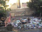 شكوى من تراكم القمامة فى شارع شيديا بكامب شيزار فى الإسكندرية