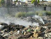 انتشار القمامة بمنطقة فلسطين بالعامرية يزعج السكان.. صور