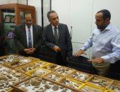 صور.. اكتشافات جديدة لمركز جامعة المنصورة للحفريات الفقارية بالصحراء الشرقية