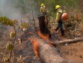 دخان كثيف يغمر شمال البرازيل تزامنا مع حرائق غابات الأمازون