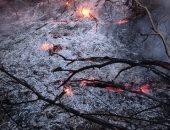 عضو بالعدالة والتنمية يحمل العمال الكردستانى مسئولية حرائق الغابات بتركيا