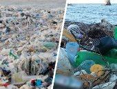 لحماية البيئة .. مطرب بريطاني يغني عن تلوث البلاستيك