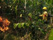 استمرار جهود إخماد حرائق الغابات فى الأمازون