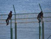 صور.. 150 مهاجرا يقتحمون السياج الحدودى بين المغرب وجيب سبتة الإسبانى