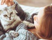 س وج .. كل ما تريد معرفته عن تربية القطط فى المنزل؟