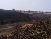 """صور.. """"البيئة"""" تزيل 15 مكمورة فحم فى حملة ببرقاش"""