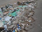 شكوى من انتشار القمامة بشارع سليم الأول فى الزيتون