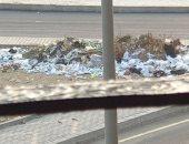 أهالى السيوف بالإسكندرية يطالبون بتوفير صناديق للقمامة