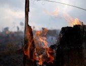 استمرار جهود مكافحة حرائق غابات الأمازون والنيران تحاصر مئات الحيوانات