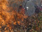 خبراء: الحرائق ليست التهديد الوحيد أمام غابات الأمازون