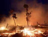 استطلاع يؤكد 83% من البرازيليين يشعرون بالقلق بالوضع الحالى بمنطقة الأمازون