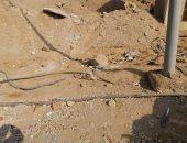 شكوى من وجود كابلات كهرباء مكشوفة في الحى الثانى بمدينة العبور