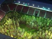 شاهد.. فنان نمساوى يحول ملعب لكرة القدم إلى غابة شجرية