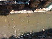 شكوى من غرق شارع اللبان بمنطقة غيط العنب بمياه الصرف الصحى