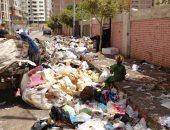 اضبط مخالفة.. القمامة تحاصر مدرسة ناصر الثانوية الزراعية بطنطا.. (صور)