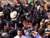 تعرف على مهرجان الطلاء الأسود  في أسبانيا