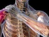 خلع المفصل قد يسبب تشوهه.. إسعافات أولية للتعامل مع الإصابة