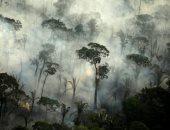اندلاع حرائق هائلة فى غابات الأمازون بولاية روندونيا بالبرازيل