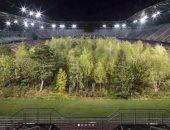 """""""دى كابريو"""" يبزر تحويل استاد إلى غابة شجرية فى النمسا.. صور"""