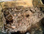 علماء آثار يكتشفون مقبرة عمرها نحو ألف سنة جنوب غربى الصين