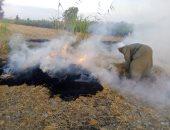 صور ..تحرير محاضر لمزارعون حرقوا قش الأرز بكفر الشيخ