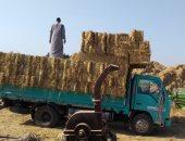 صور.. البيئة تجمع 24288 طن قش أرز وتفتش 1665 منشأة لمواجهة نوبات تلوث الهواء