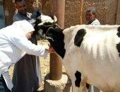 الزراعة تطلق 6 قوافل بيطرية لفحص وعلاج 3500 رأس ماشية مجانا بالمنوفية