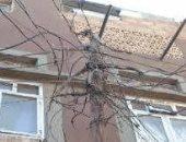 """""""مصائد الموت"""".. شكوى من انتشار الأسلاك الكهربائية فى شواع مدينة طهطا"""