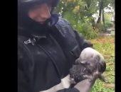 شاهد.. رجل إطفاء روسى ينقذ قطة صغيرة من أسفل منزل محترق