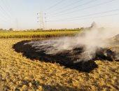 محافظ دمياط تشدد على إحكام الرقابة لمنع حرق قش الأرز بالأراضى الزراعية