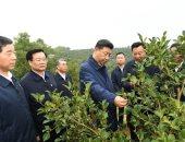 """الرئيس الصينى """"شى جين بينج"""" فى جولة تفقدية بمقاطعة خنان"""