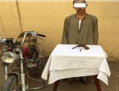 سمسار مواشى يقتل مواطنًا بسبب عدم قدرته على رد الدين