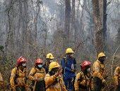فرنسا: مانحون يقدمون مساعدات بقيمة 500 مليون دولار لحماية الغابات المدارية