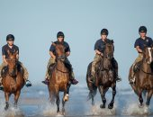صور.. وحدة من الخيول فى القوات الملكية البريطانية يستعرضون بشاطئ هولكام