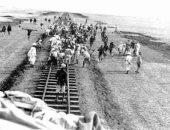 23 سبتمبر عام 1852.. ذكرى إنشاء أول خط سكة حديد بين القاهرة والإسكندرية