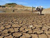"""منتدى القاهرة للتغير المناخى يناقش الثلاثاء """"النظم البيئية الهشة وكيفية حمايتها"""""""