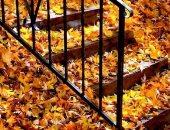 """الخريف.. ما قاله الشاعر العراقى بدر شاكر السياب عن """"ليالى الخريف"""""""