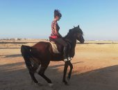 فيديو وصور.. سائحة ألمانية بالغردقة تمتطى ظهر حصان ويتراقص بها