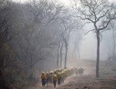 بوليفيا تنشر دوريات من رجال الإطفاء للتأكد من إخماد حرائق الغابات