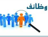 7 أرقام هامة عن التعيينات فى الوظائف الحكومية وتدريب الموظفين.. تعرف عليها