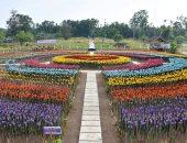 مدينة فلبينية تحول مخلفات البلاستيك إلى زهور تيوليب ملونة