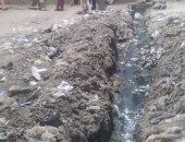 شكوى من استمرار انتشار مياه الصرف الصحى وتراكم القمامة بقرية برمبال بكفرالشيخ