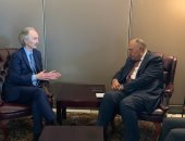 وزير الخارجية يبحث مستجدات الوضع على الساحة السورية مع المبعوث الأممى بسوريا