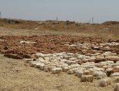 """العراق.. ضبط 4 أطنان من مادة """"سى فور"""" شديدة الانفجار فى الأنبار"""