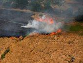 صور.. اتساع رقعة حرائق الغابات فى إندونيسيا.. والنيران تلتهم مئات الأفدنة